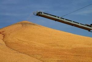 Harvested corn in Nebraska; photo by John Lillis via flickr