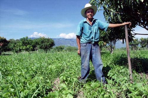 Carbon Blood Money in Honduras