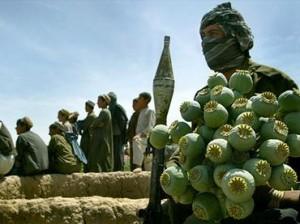 drug-war-afghanistan-latin-america-prohibition-violence-corruption