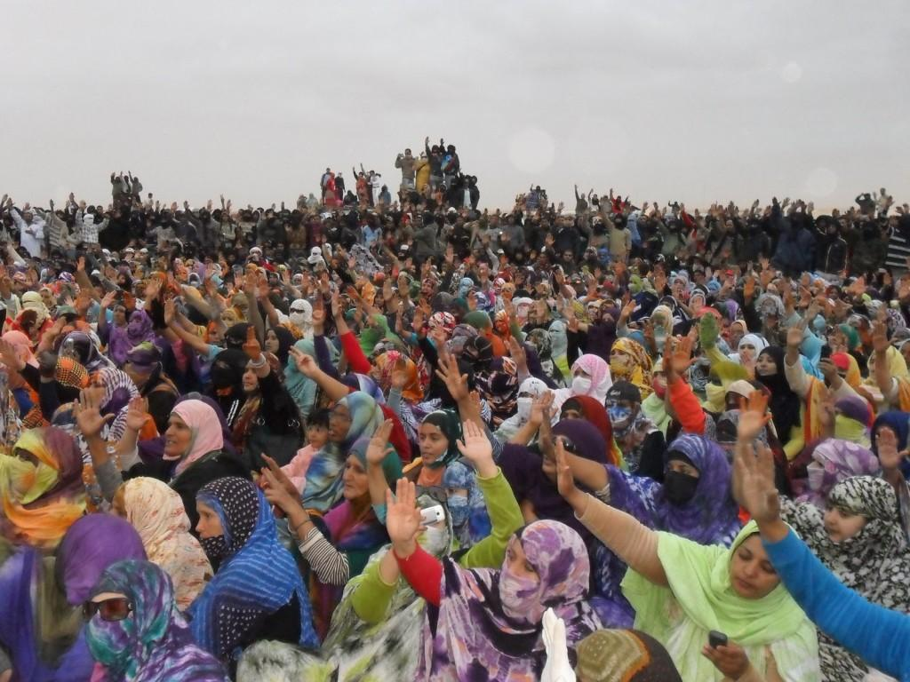 Echoes of Occupy in Western Sahara