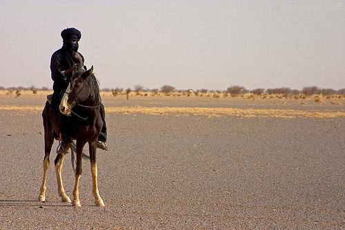 Can Mali Reunite?