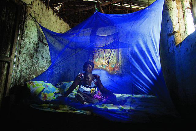 Ebola Dwarfed as Threat to Africa by Malaria and HIV/AIDS