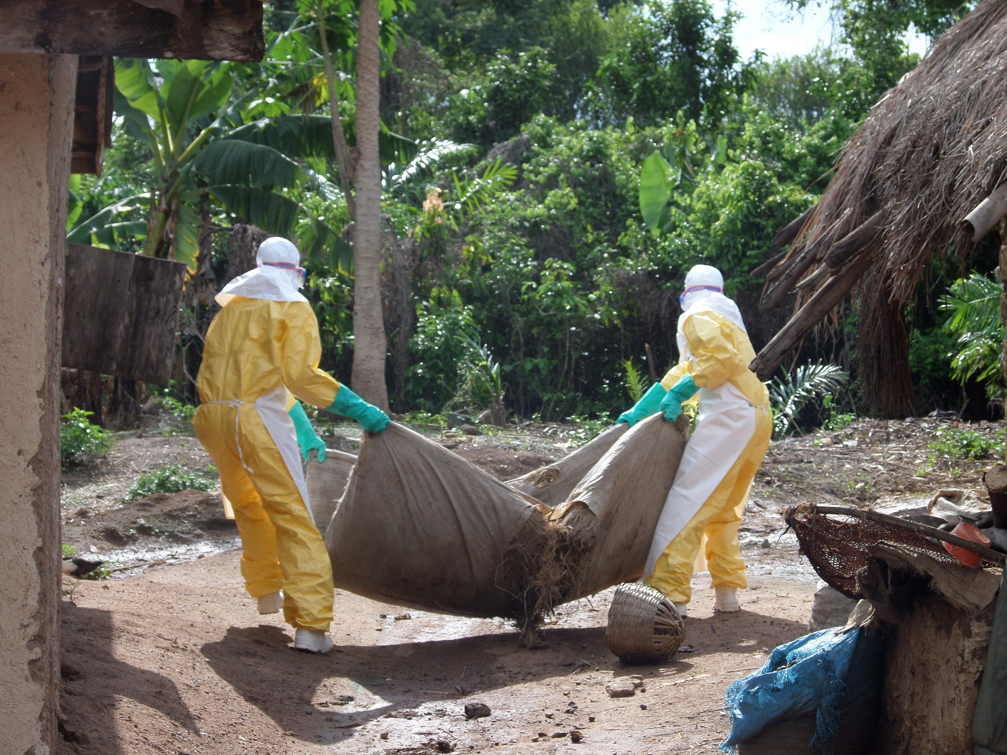 Ebola's Racial Disparity